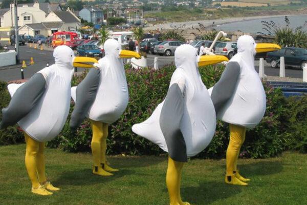 Festival-Of-The-Sea-Grimsby-Seagulls-002